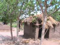 Malawi-Lower Shire-Dorf in Tengani