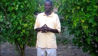 Matiasi Mybeck, Field Officer Active Aid in Africa in Ngona, Malawi